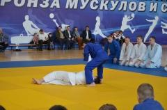 Фестиваль боевых искусств_10