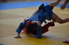 Фестиваль боевых искусств_14