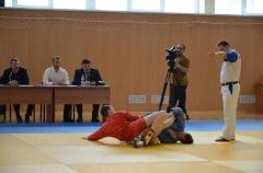 Фестиваль боевых искусств_17