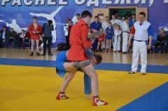 Фестиваль боевых искусств_21