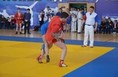 Фестиваль боевых искусств_22