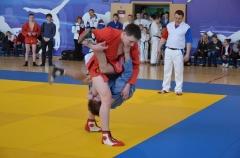 Фестиваль боевых искусств_23