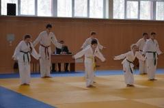 Фестиваль боевых искусств_26
