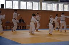 Фестиваль боевых искусств_27