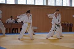 Фестиваль боевых искусств_28