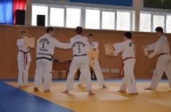 Фестиваль боевых искусств_29