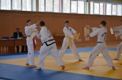 Фестиваль боевых искусств_30