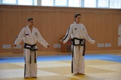 Фестиваль боевых искусств_31