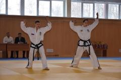 Фестиваль боевых искусств_32