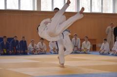 Фестиваль боевых искусств_4