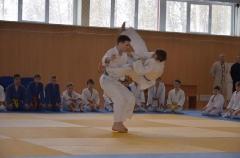 Фестиваль боевых искусств_5